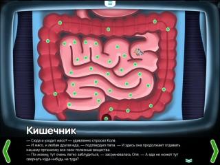 Строение кишечника - познавательный мультфильм для детей