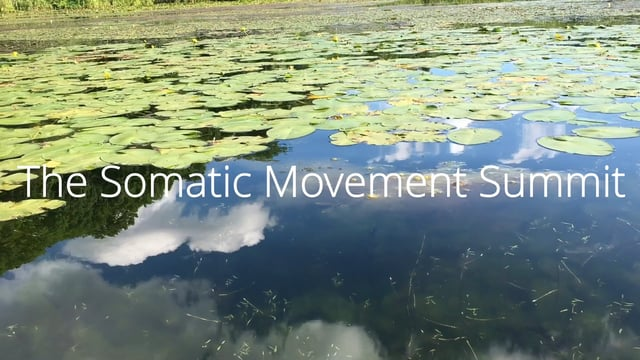 Somatic Movement Summit: Artful Embodiment, Diving in the Waters of Creation