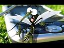 Пластинки от комаров и москитов 100 штук Хорошо пахнут и убивают насекомых