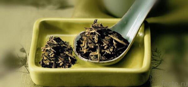 Пусть в душе бушует вьюга, а на сердце - вечная весна. С новым днём, девчонки и мальчишки, леди и джентельмены, синьоры и синьориты! Сегодня мы поговорим с вами о пользе зеленого чая. Ведь утро без чая - это не утро.