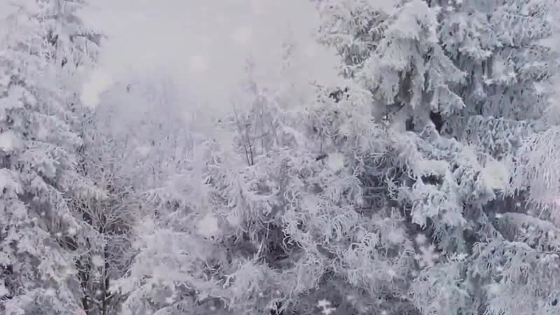 Метель. Вячеслав Анисимов. Автор ролика Тамара Ветошева.720 mp4