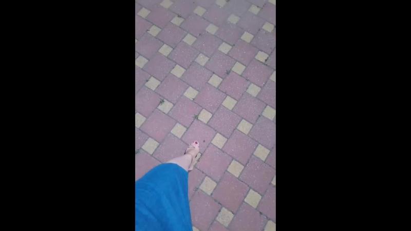 VID_21960805_155016_962.mp4