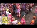 Violent Indian festival of Lathmar holi!