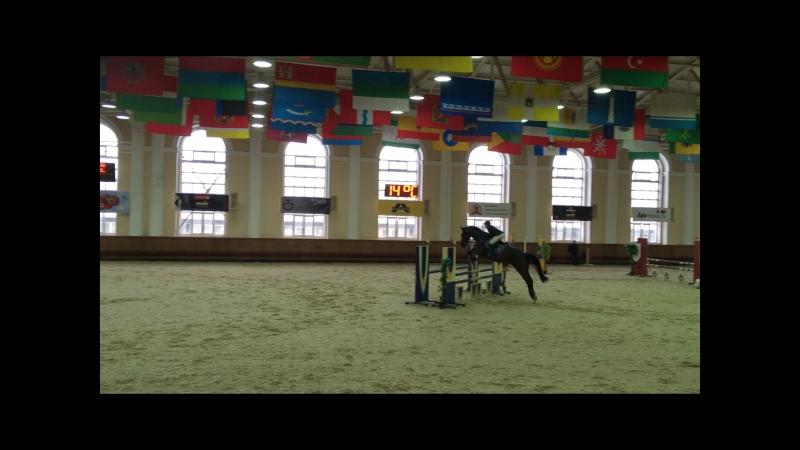 Карамболь 100см 18 февраля