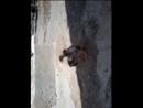Video-2011-01-01-06-58-57