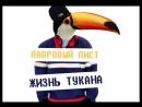 Лавровый Лист - Жизнь Тукана