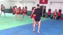 Wushu Sanda Vietnam Team