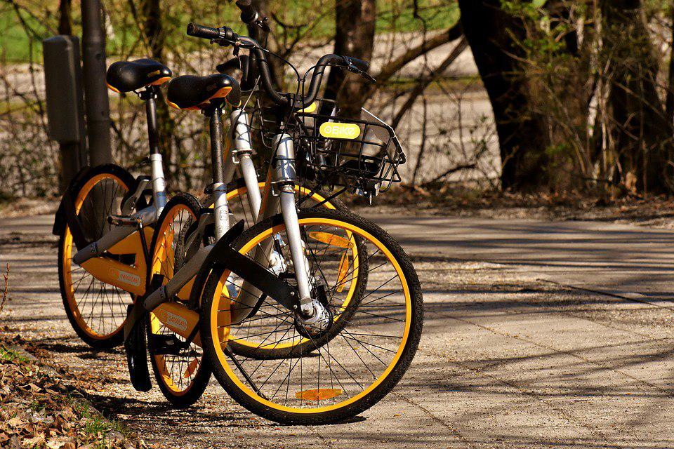 Велосипедистов в САО ждут шесть велодорожек и десятки пунктов проката двухколесных «коней»