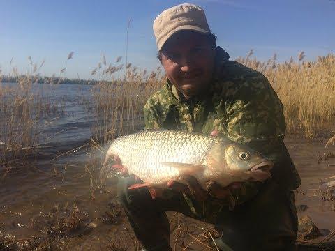11 Еще бы Чуть Чуть и Река Забрала бы Спиннинг Рыбалка Донная Ловля Голавль