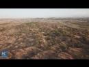 Усилиями 6 человек пустыня отступила на 200 кв км