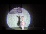 Платонова Версавия, 5 лет, композиция