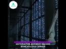 Интерактивная серия «Черного зеркала» | АКУЛА