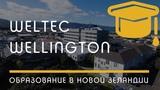 ПОЛИТЕХНИКИ Wellington Institute of Technology (WelTec), город Wellington