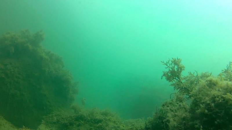 Подводная черноморская одиссея 2