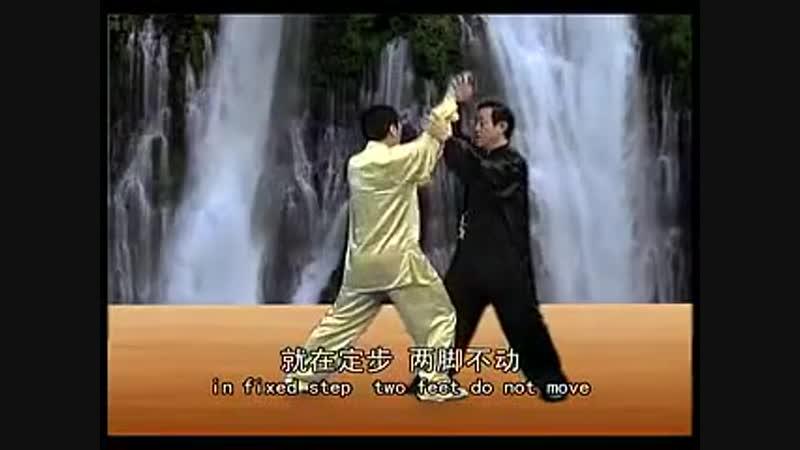Chen Zhenglei Chen style Tai Ji Push Hand