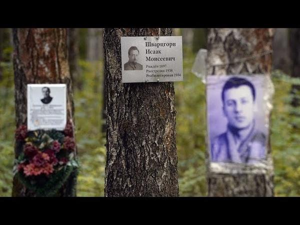 Археология без раскопок: как в Коммунарке нашли захоронения 6,5 тысяч жертв репрессий
