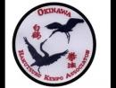 Okinawan Hakutsuru Kenpo