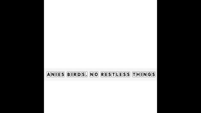 Anies birds. single. no restless things
