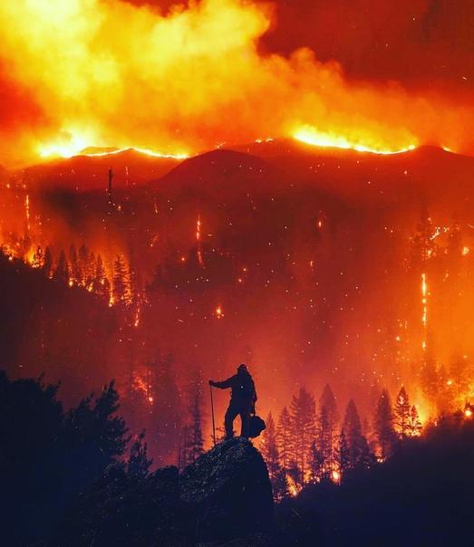 Самый сильный пожар за всю историю Калифорнии в фотографиях из соцсетей