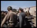 Фильмы про Лошадей-Спасение белых скакунов 1963