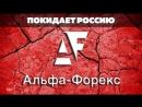 Форекс и рынки • eToro добавил Stellar, Coincheck работает, Альфа-Форекс уходит из России