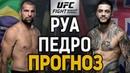 Маурисио Шогун Руа Тайсон Педро Прогноз к UFC Fight Night 142 Adelaide