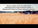 Чем ты кормишь свою душу? (слово перед молитвой) Павел Бороденко 27.06.18