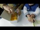 Завтрак в центре токийского залива в Морском Светлячке. Чудеса инженерии в Япони
