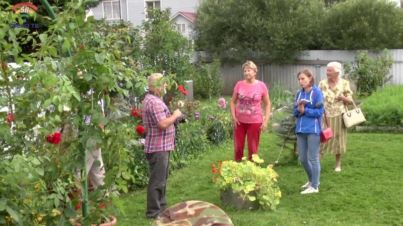 Очередной этап конкурса Ветеранское подворье 2018: участники из Тосно, Нурмы и Шапок