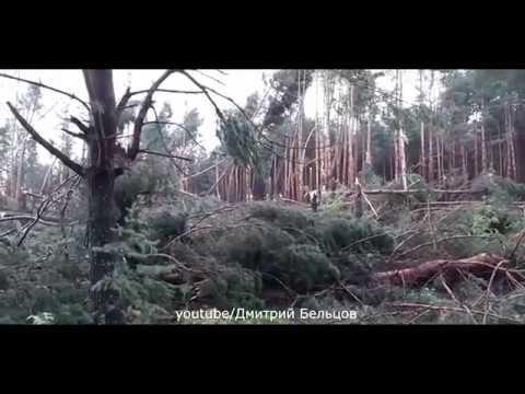 Последствия шквала в Рязанской области 21 07 2018 Storm in Ryazan Oblast Russia july 21 2018