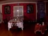 Дворцы и парки пригородов Санкт-Петербурга (Часть 2: Кронштадт, Стрельна, Царское Село, Павловск, Ораниенбаум)