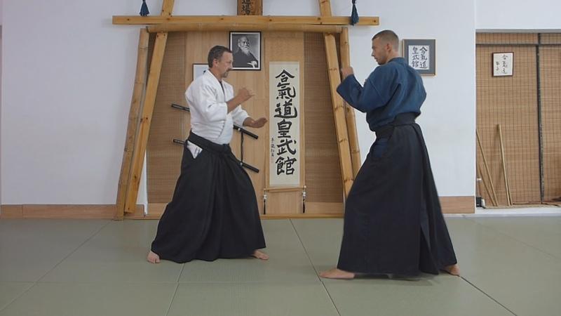 Aikido Punch and Kicks defense