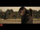 Планета обезьян- Война - Русский Трейлер 2 (2017) - MSOT
