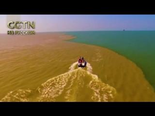 Природа создает шоу похлеще любых телевизионщиков. Река Хуанхэ впадает в Бохайское море. И это невероятно красиво!