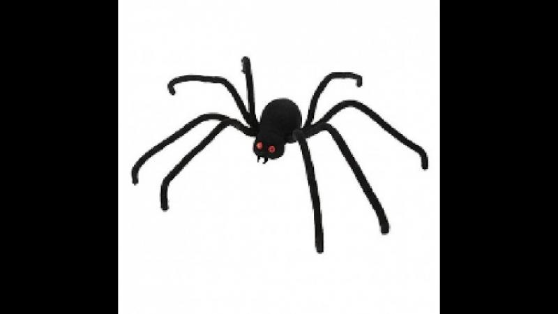 -павук