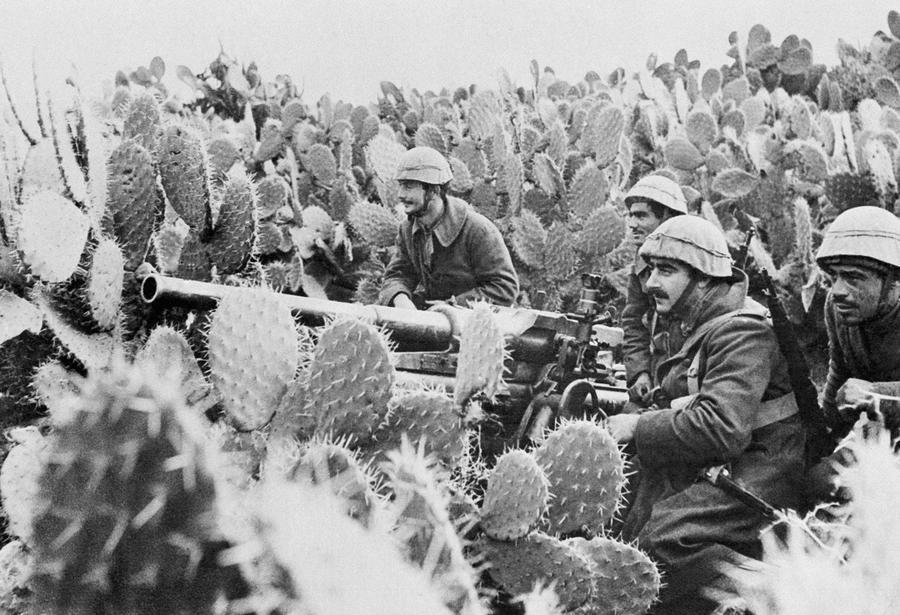 Итальянские артиллеристы в кактусах Туниса, 31 марта 1943 года.