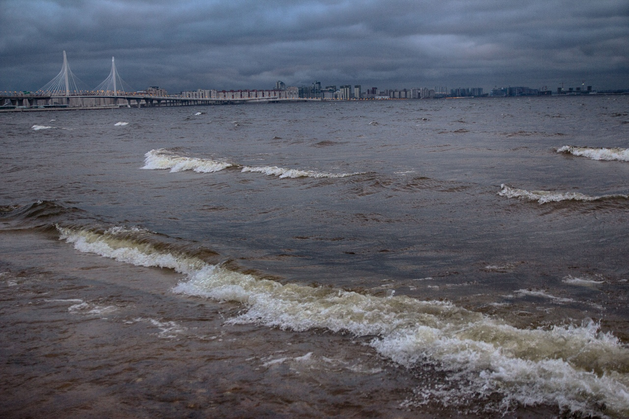 контагиозного финский залив фото сегодня увлекаюсь