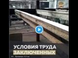 #NoComment Надеемся, что у заключенного, приславшего это видео, проблем не будет, и ярославская история не повторится