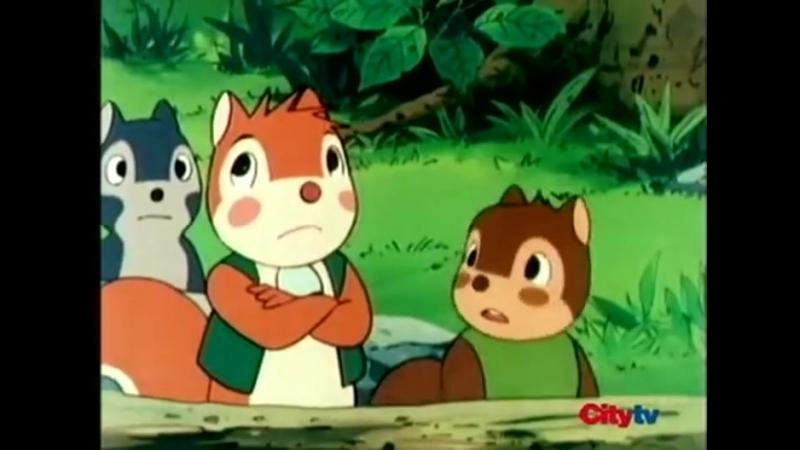 Banner y Flappy- Squirrel School -10S