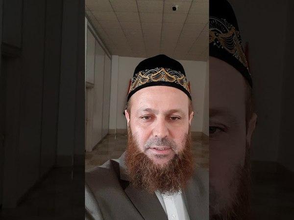الأخبار اليوم الشيخ علي محمود يكون معكم ال 1