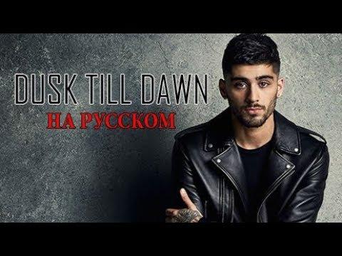 Dusk Till Dawn - Zayn feat. Sia | НА РУССКОМ | Bunny Roy Project