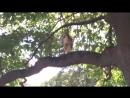 Dikij-Sokol-Ochen-udachnaya-i-redkaya-suemka-Sokola-na-prirode-720p