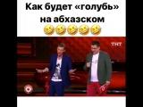 Как будет голубь на абхазском