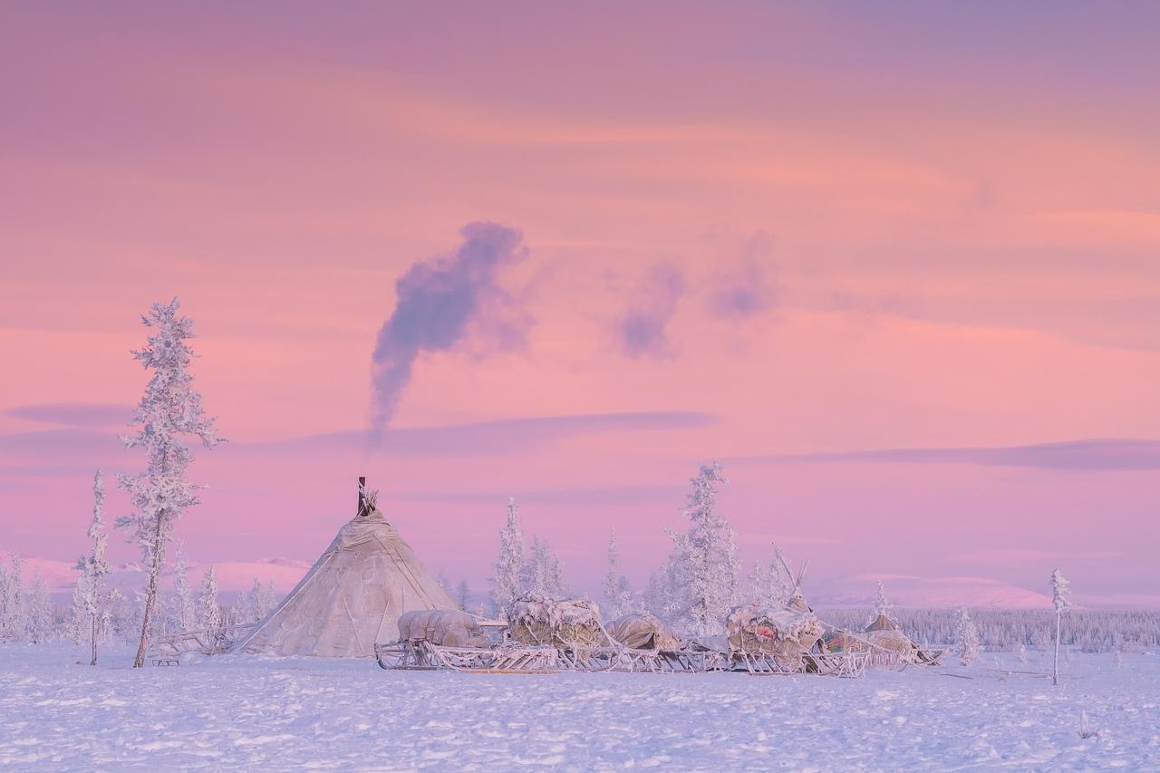 картинки к суровой зиме тундры еще эта