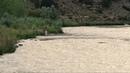 Пресная вода / Sweetwater (2013) - триллер, Вестерн