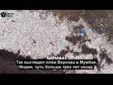 Как один человек убрал 9000 тонн мусора с пляжа [NR]