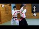 合気道 - 短刀取り Tanto dori - Aikido Knife Defense Techniques