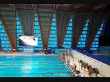 Открытый турнир по подводному спорту (плавание в ластах)