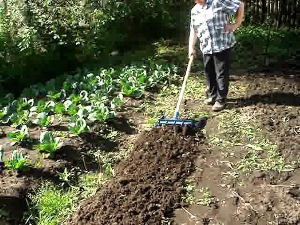 Работа моей жены с чудо лопатой Гайдамаха