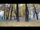 Лопухинский парк